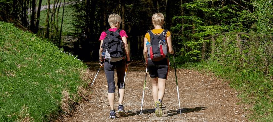 Скандинавские прогулки